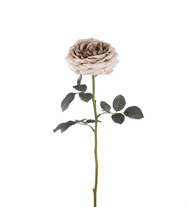 torkade blommor online