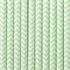 Sugrör Chevron Mint